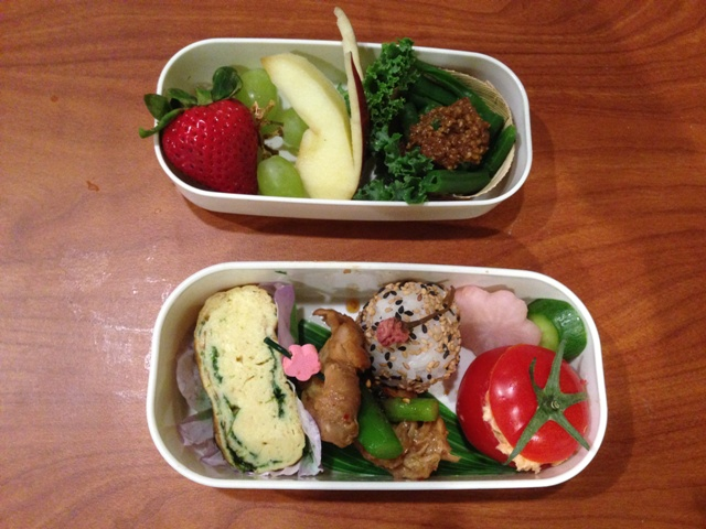 A cherry blossom-themed bento box for a girl